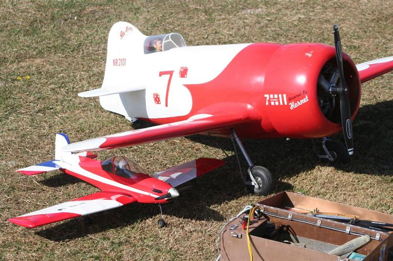 Gee Bee providing Shelter